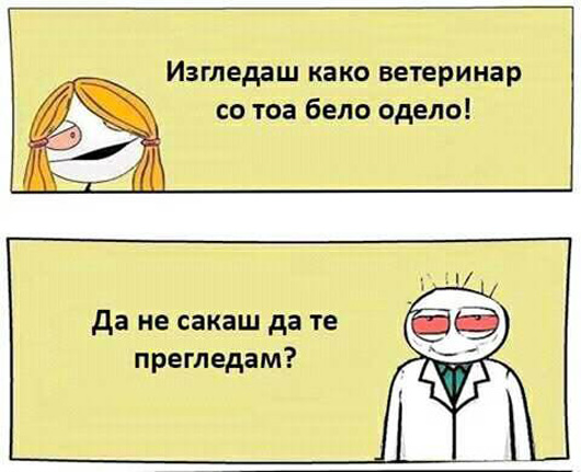 veterinar.jpg