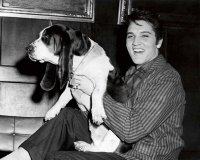 famous-historic-people-with-their-pets-cats-dogs-20.jpg