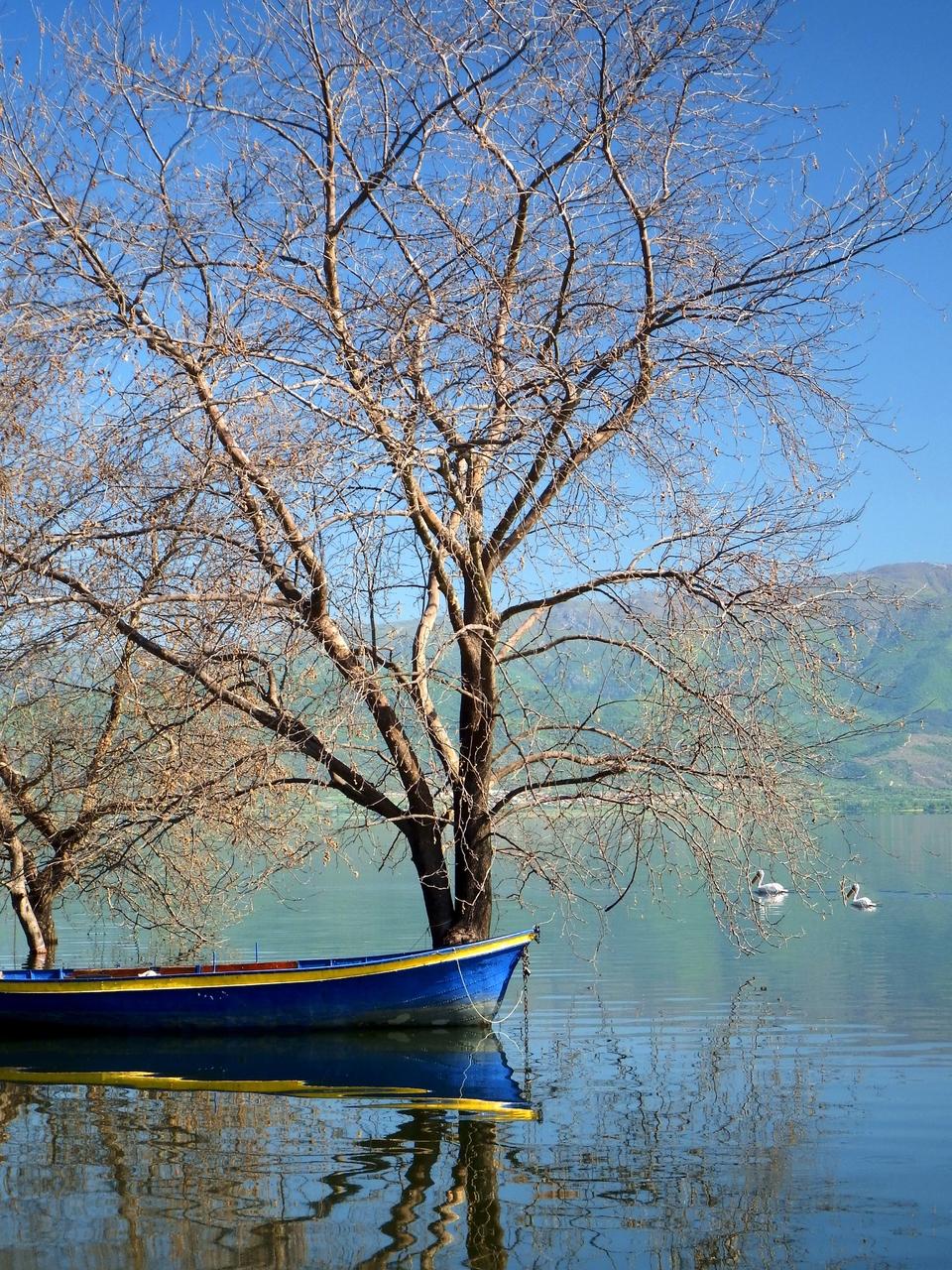 Рефлексија,  Дојранско Езеро