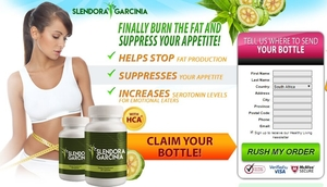 http://www.supplementssouthafrica.co.za/slendora-garcinia/
